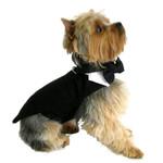 Black Dog Tuxedo w/Tails, Top Hat & Tie