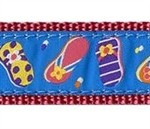 Summer Sandals 3/4 & 1.25 inch Dog Collar, Harness, Lead & Acc