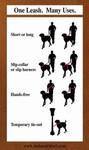 Leather Multi-Function Euro Pet Dog Leash
