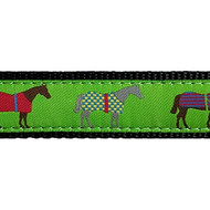 Race Horse 3/4 & 1.25 inch Dog Collar, Harness, Lead & Acc.