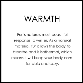warmth.jpg