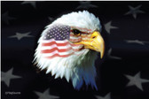 PATRIOTIC EAGLE 3X5' NYLON FLAG