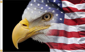 US FLAG EAGLE 3X5' NYLON FLAG