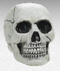 670458 Cemetery Plastic Value Skull