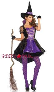 2PC Crafty Vixen Costume
