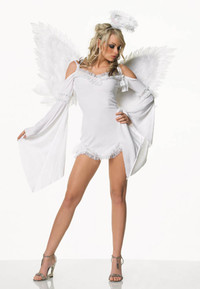 Sexy angel costume
