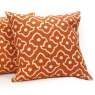 Designer Pillow (7)
