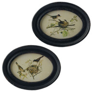 "11.5"" Oval Bird Prints - Set of 2"