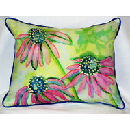 Cone Flowers Large Pillow