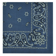 Blue Bandana Cloth Napkin- Set of 4