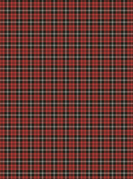 Plaid Tartan/Cabana Stripe Gift Wrap
