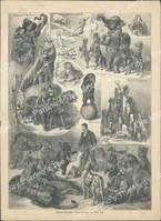 http://images.mmgarchives.com/JP/AA-1841/AKK-087_F.JPG
