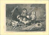 http://images.mmgarchives.com/JP/AA-1853/AKK-833_F.JPG