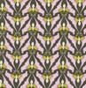 Papillon-Caramen APLX-2