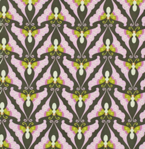 Papillion-Caramel GROW