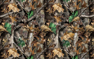 RealTree Camouflage Cottton Fabric All Over Print