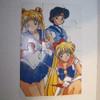 Sailor Moon Puzzle 12 pieces 2 sided