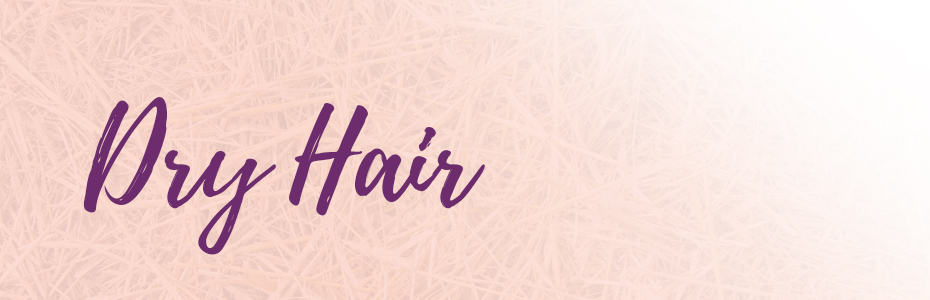 de-web-dryhair-header.jpg