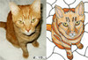 Faux Stained Glass Custom Cat Suncatcher