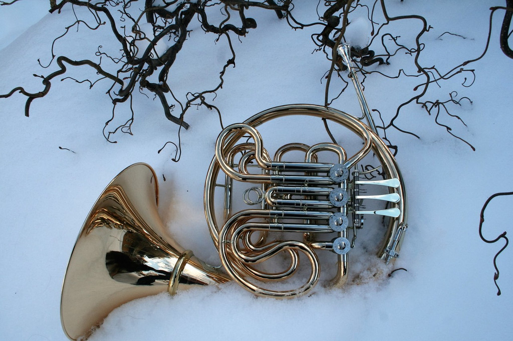 Briz 2000G Pope-Balu Alliance Horn
