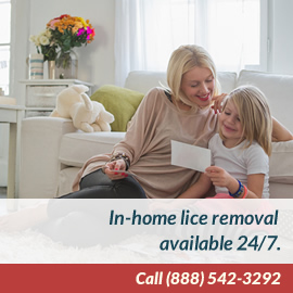 In-Home Lice Treatment Services Available 24/7