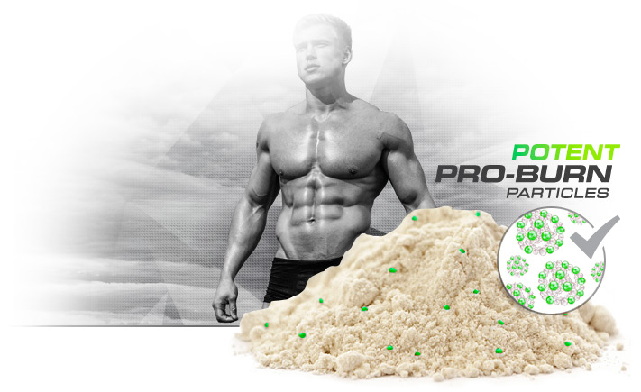 Vitalstrength Pro Muscle Protein Powder Pro Burn Particles
