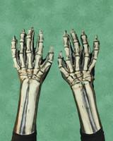Skeleton Reaper Gloves Monster Arms Hands Halloween Costume Accessories