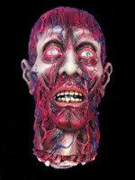 Life Size Severed cut off Skinned Head Gore Halloween Prop Decoration
