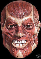 Skinner Skinless Corpse Zombie Halloween Mask Costume
