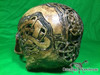 Zane Wylie carved real human skull back left photo Product URL: www.osteologywarehouse.com/real-human-skulls/zane-wylie-carved-real-human-skull.html