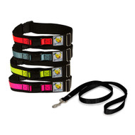 Leash Belt Bundle with PetSafe 4' Black Nylon Leash Included