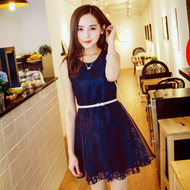 Lace Mesh Dress with Belt