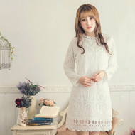 Mesh Peak Collar Lace Dress