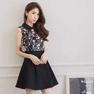 Contrast Collar Print Pleated Dress