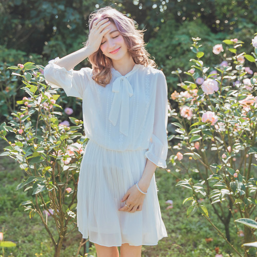 Lace Embroidery Pleated Dress