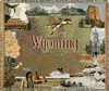 Wyoming state tapestry throw blanket