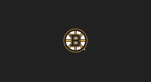 Boston Bruins Pool Table Felt – 8 foot table
