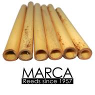 Marca Oboe Tube Cane