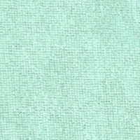Mint Green Baby Terry Knit - 1/2 yard