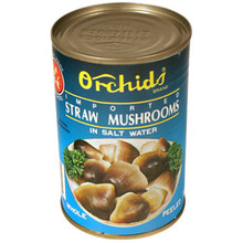 Orchids Straw Mushroom 10 oz  From Orchids