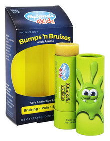 Bumps 'N Bruises Ointment Stick 0.8 OZ By Hylands
