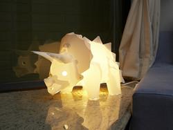 DIY Assemble Dinosaur Lights set - Triceratops
