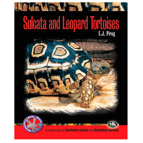 Sulcata and Leopard Tortoises