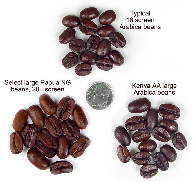 Roasted Papua New Guinea coffee
