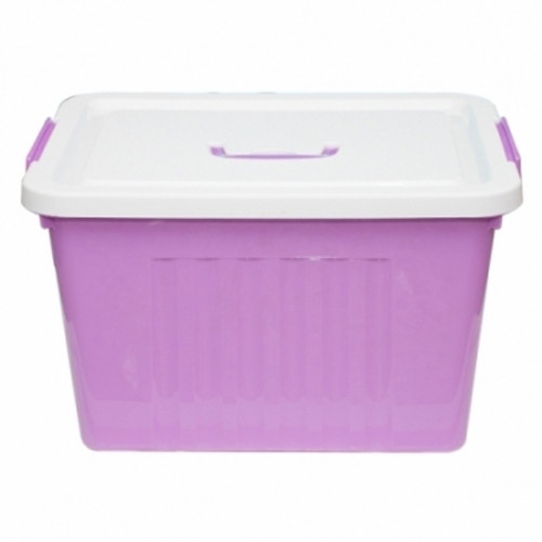 Judu Purple pvc Container 3013 (CON10)