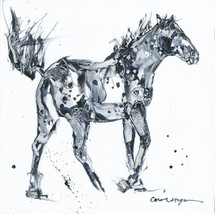 Horses - Cavallo - No Dice