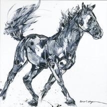 Horses - Cavallo - Adios