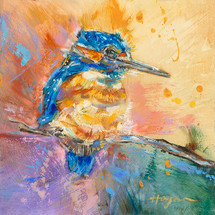 Baby Kingfisher #23
