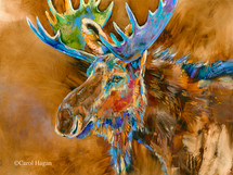 Chocolate Moose print on metal by Carol Hagan.