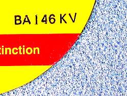 Ceramic Abrasive 10% -20%